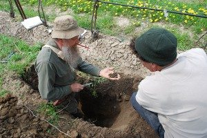 examining the soil in the vineyard